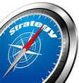 strategy compass vector image