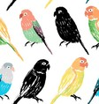 Seamless pattern with colorful hand drawn parrots vector image