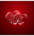Glass transparent heart couple vector image