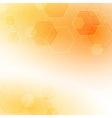 Solar abstract hexagon background vector image