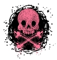 with cartoon Jolly Roger vector image