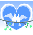 doves of love vector image