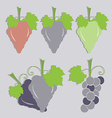 set of grape icon vector image