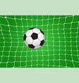 soccer ball in the net vector image