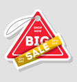 big sale isolated advertising sticker vector image vector image