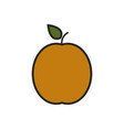apricot icon on white background vector image