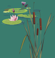 blossoming bog vector image