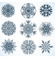 Collection of Snowflakes some snowflakes with vector image vector image