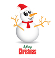 Merry Christmas and Snowman isolated on white vector image