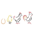 Chicken farm vector image vector image