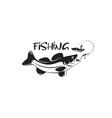 predatory fish vector image vector image