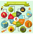 Birthday infographic flat style vector image