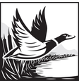Monochrome with flying wild duck over vector image