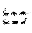 Picture of a wild animals vector image