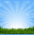 grass border with sunburst vector image