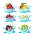 fresh strawberry healthy mango black and red vector image