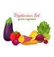 vegetarian set garden vegetables cartoon style vector image