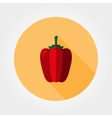 Red bell pepper Icon vector image