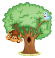 Monkey in a tree vector image vector image