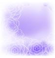 beautiful purple rose flower background vector image
