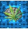 Rasta brain vector image