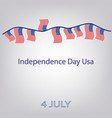 flag of the united states independence day usa vector image