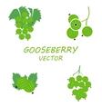 flat gooseberry icons set vector image