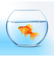 Goldfish In Water Bowl Realistic Image vector image