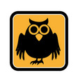 square frame of halloween with owl vector image