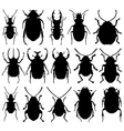 Beetle silhouettes vector image
