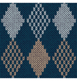 Blue Color Knitted Ornament vector image
