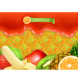 Fruity sweet background vector image vector image