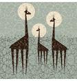 giraffes vector image vector image