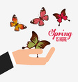 hello spring design vector image