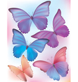 Beautiful blue butterfly Vector Image