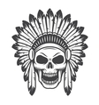 american indian skull vector image