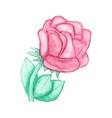 Gentle hand drawn watercolor rose vector image