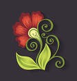Beautiful Decorative Colorful Flower vector image