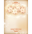 Christmas Poinsettias Celebration Background vector image