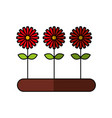 cultivated flower garden icon vector image