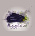 eggplant watercolor food vector image