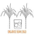 Modern line style logo branding logotype badge wit vector image