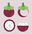 set of mangosteen icon vector image