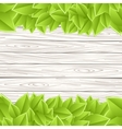 Template with wood and leaves vector image vector image