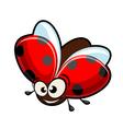 funny cartoon ladybug vector image