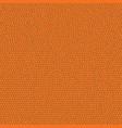 orange leather pattern vector image