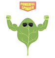powerful spinach A strong plant with big muscles vector image