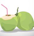 coconutjuice vector image vector image