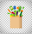 paper bag with fresh food vector image vector image