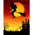 Witch flying on a broomstick vector image